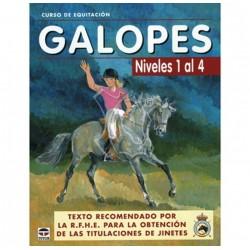 Libro curso equitación...